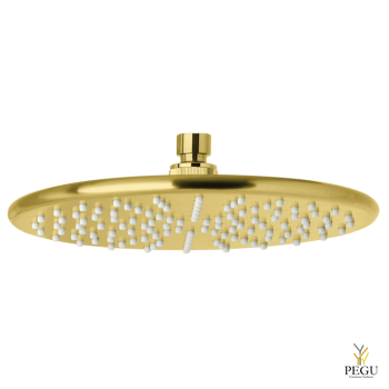 7666379_silhouet headshower_brushed brass.png