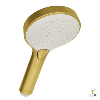 7668679_silhouet handshower_brushed brass.png